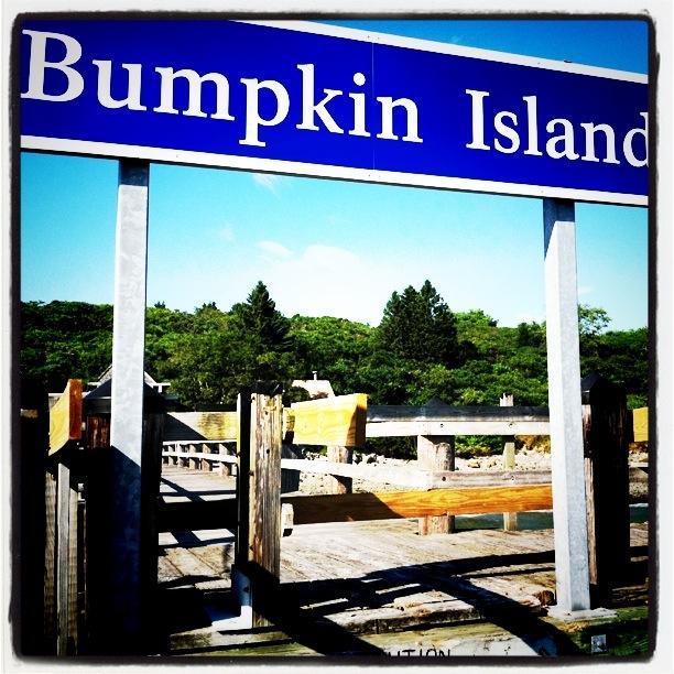 I'm a bumpkin.  Are you a bumpkin?
