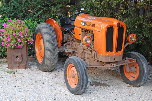 Orange tractor.  Magenta flowers.  My friend, Tina, would have loved to have them both at her wedding!