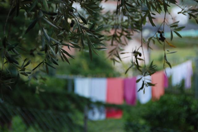 Blurry laundry.  I think it's kinda cool.